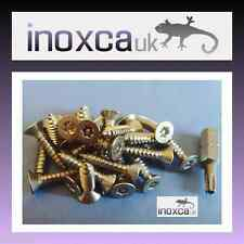 25 @ 4 x 12 mm STAINLESS STEEL TORX PIN SELF TAPPING SCREW COUNTERSUNK + T20 BIT