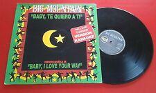 "Reggae BIG MOUNTAIN ""Baby, Te Quiero A Ti"" *IN SPANISH* 12"" Single SPAIN 1994"