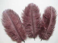 """FEATHERS 5"""" - 7'' LONG CHOCOLATE  BROWN  OSTRICH FEATHERS X 5 FREE Postage."""