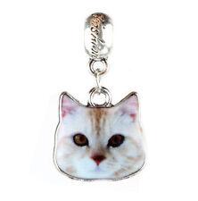 2pcs Silver kitty cat Charm Beads Fit European Charm Bracelet Pendant #429