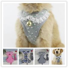 Mesh Padded Dog Harness & Leads Pet Puppy Soft Vest for Dogs S M L XL Chihuahua
