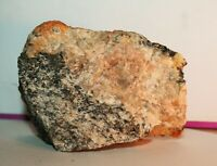 A SPECIMEN OF LEWISIAN GNEISS FROM THE TYPE LOCALlTY OF THE ISLE OF LEWIS 233g