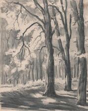 FOREST LANDSCAPE Antique Pencil Drawing c1930 IMPRESSIONIST