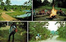 Grapeland,Texas,Frontier Camp,4 Views,Houston County,c.1950s