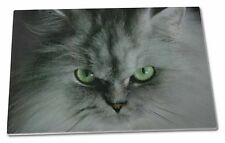 Grey Persian Cat Extra Large Toughened Glass Cutting, Chopping Board, AC-12GCBL