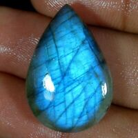 33.30Cts Natural Multi Fire Spectrolite Labradorite Pear Cabochon Loose Gemstone