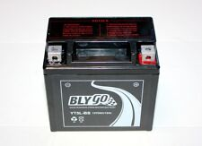 YT5L-BS 12V5AH Battery 110c 125cc 140cc PIT PRO TRAIL DIRT QUAD BIKE ATV BUGGY