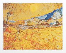 van Gogh Die Ernte Poster Kunstdruck Bild 50x70cm