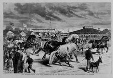 INTERNATIONAL LIVE STOCK EXHIBITION STOCKYARDS HORSE SHOWING JUDGES PAVILLION