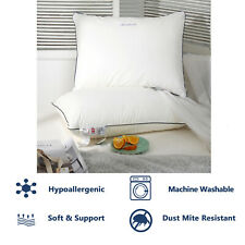 Luxury Feather And Down Pillow Pair Hotel Quality