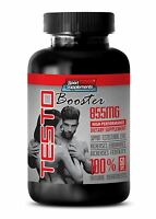 Testosterone Booster For Men Sex - TestoBooster T-855 - Panax Ginseng Pills 1B
