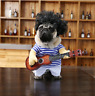 Guitarist Player Halloween Pet Dog Cat Puppy Funny Hot Clothes Costumes Suit XL