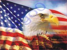 1x STICKER USA American Eagle Patriot decal États 10