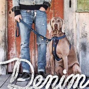 EzyDog  DENIM Chest Plate Harness for  dogs ADD a matching Denim Leash!
