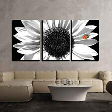 """Wall26 - Sunflower in Black and White with Red Ladybug - CVS - 16""""x24""""x3 Panels"""