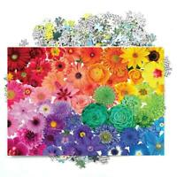 1000 Piece Rainbow Flowers Jigsaw Puzzles For Adults Kids Learning R2S9