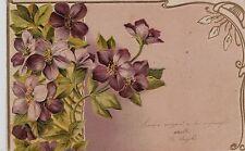 # AUGURALI: VIOLETTE- a rilievo - 1903