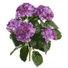 Vickerman FL171502 Lavender Hydrangea X5 Floral Bush - 17.5 in.