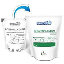 Intestinal Colitis (colon Active) Gatto 2 kg Forza10 problemi intestinali