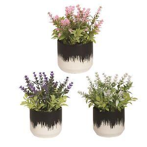 Floral Decorative Ceramic Pots Indoor Succulent Planter Herb Flowers Set of 3