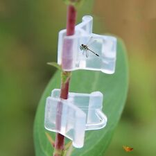 Newly 100PC Clear Grafting Clip Gardening Fruit Tomato Flower Vine Seedling Tool