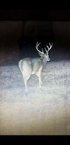 Updated 4/21 Deer hunting