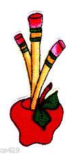 Loralie roll call teacher school apple pencil cup vase fabric applique iron on