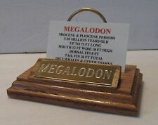 "MEGALODON SHARK TOOTH TEETH 5"" FOSSIL DISPLAY STAND Tooth Not Included :-)"