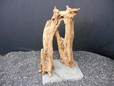 DRIFTWOOD MOUNTED FOR FISH AQUARIUMS REPTILE GARDEN TERRARIUM TAXIDERMY BONSAI