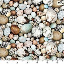 Animal Fabric - Birdwatching Packed Bird's Eggs - Elizabeth's Studio YARD