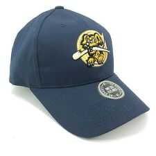 Charleston RiverDogs MiLB Youth Adult Sizes Outdoor Cap Adjustable Hat Blue Logo