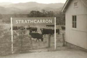 PHOTO  STRATHCARRON RAILWAY STATION & RIB 1969