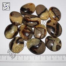 1 Pierre roulée, Galet plat en Septaria 30mm, Minéraux, Lithothérapie