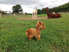 Gran Juguete De Felpa Baby Alpaca O Llama 24 Cm (9 1/2 Pulgadas)