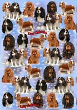 Cavalier King Charles Spaniel Dog Christmas Wrapping Paper By Starprint