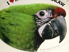 NEW! Military Macaw Parrot Exotic Bird Vinyl Decal Bumper Sticker