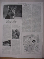 1953 German Shepherd Dog in Sergeant's Flea Treatment Vintage Print Ad 10458