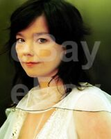 "Bjork ""Björk"" 10x8 Photo"