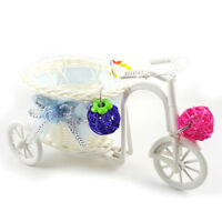 FJ- EG_ Bike Trolley Shopping Cart Bird Parrot Toy Pet Intelligence Growth Toys