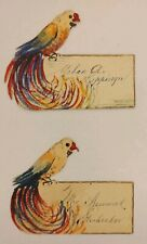 "2 Antique Name Calling Card Invitation Placecard Parrot Handpainted 3""x 4""Bright"