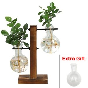 Table Desk Bulb Glass Hydroponic Vase Flower Plant Container Pot Wooden Tray HOT