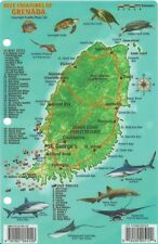 Grenada Dive Map & Reef Creatures Guide Laminated Fish Card by Franko Maps