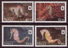TONGA 2012 WWF FISH, THORNY SEAHORSE UNMOUNTED MINT SET OF 4
