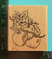 Apples On A Branch / Flowers Rubber Stamp by Embossing Arts Fruit