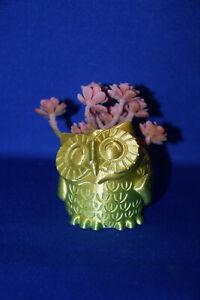 OWL inspired ~ Flower Succulent Air Plant Pot Planter Figure