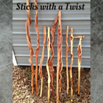 """LaSalle5647 """"Sticks with a Twist"""""""