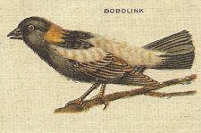 Vintage tobacco cigarette silk - use in crazy quilt - Bird Bobolink
