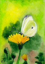 ACEO original painting  summer flower butterfly floral signed by T. Volokhova