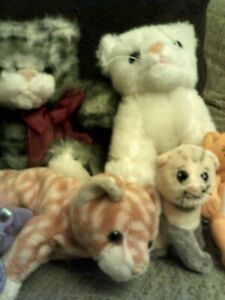plush cats bundle of 9, 7 toys and 2 keyrings, various makers and sizes used #3