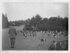 B455 Photo original vintage chasse à courre chien chasseur chevaux